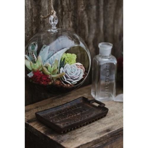Hanging Globe Glass Terrarium Indoor Succulent Garden Plants