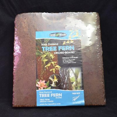 BIN New Zealand Tree Fern Orchid Board Twin Pack