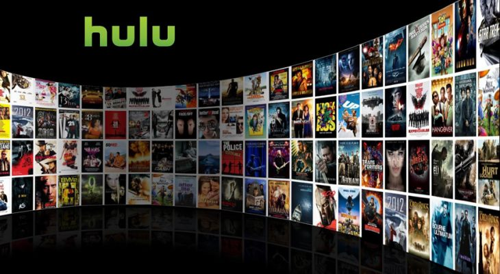 Teaching Seniors Hulu and Hulu Plus