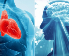Alzheimer's Disease and Cardiovascular Health