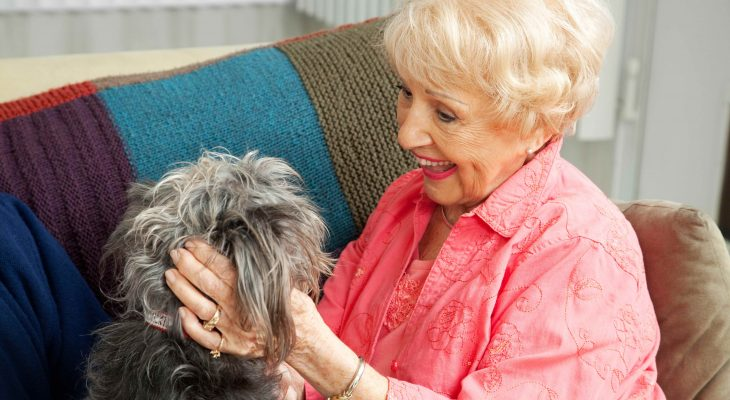 How Pets Keep Seniors Healthy & Happy
