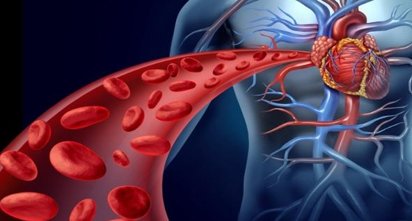 Choosing the Right Anticoagulant For You