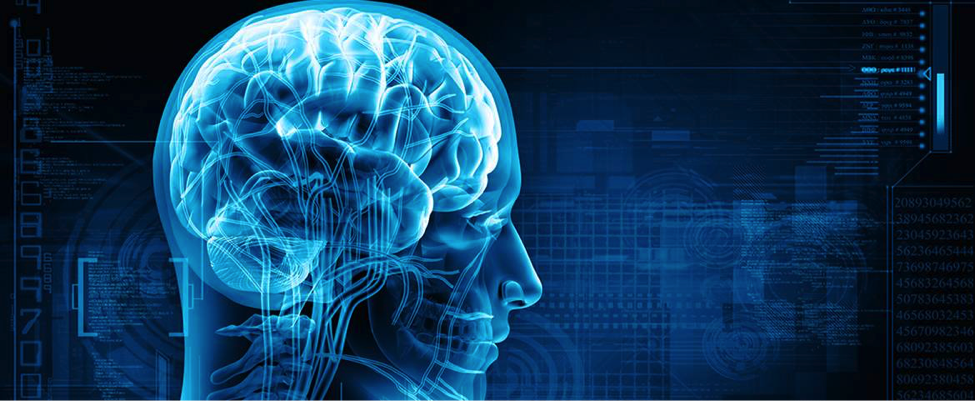7 Types of Brain Injuries You Should Know