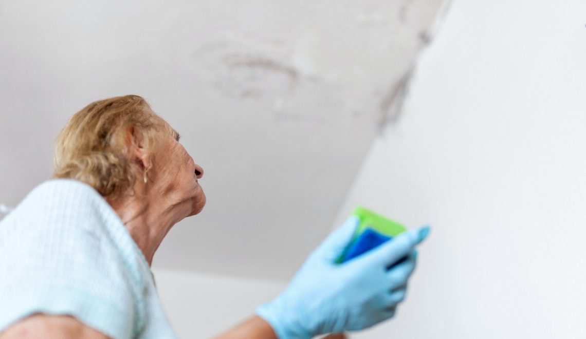 Cleaning up dangerous fungus from a wet wall after water leak