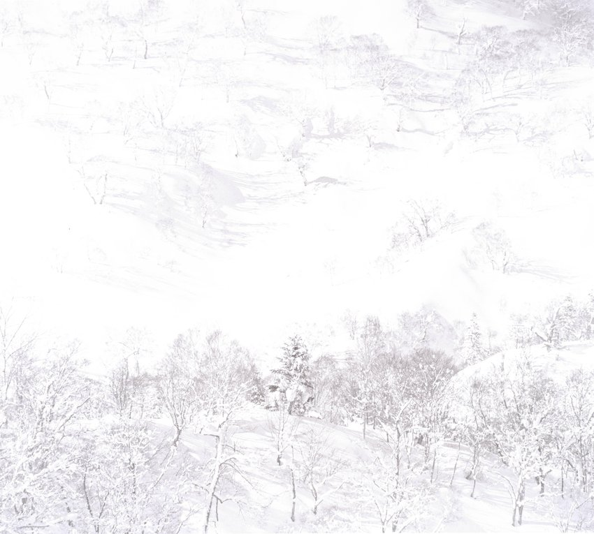 image of 'Untitled, from the series Snowland'