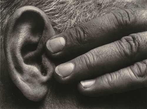 Untitled (Hand and Ear of Ramiel McGehee)