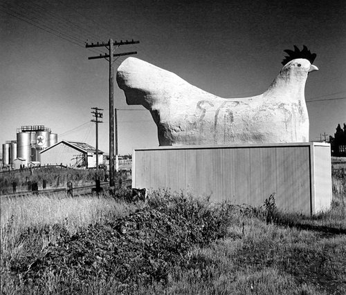 Monument to the Chicken Center of the World, Petaluma, California