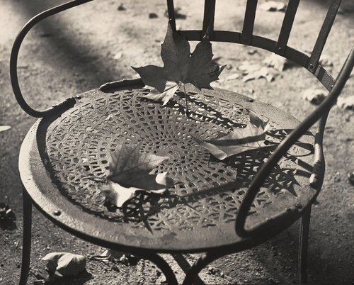 Chair and Dead Leaves, Luxembourg Gardens, Paris