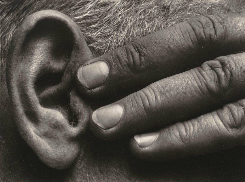 image of Untitled (Hand and Ear of Ramiel McGehee)
