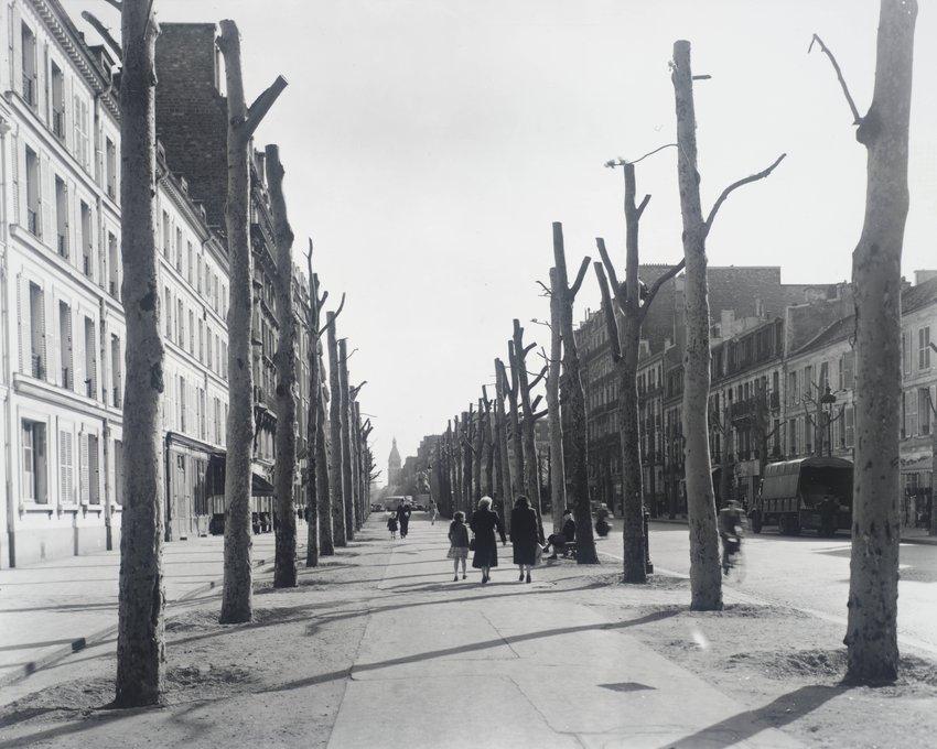 image of 'Avenue du Général Leclerc, Paris, France'