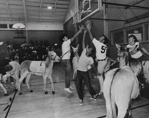 Donkey basketball, from the portfolio Leisure
