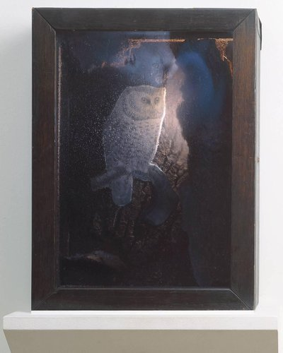 Untitled (Blue Owl Box)