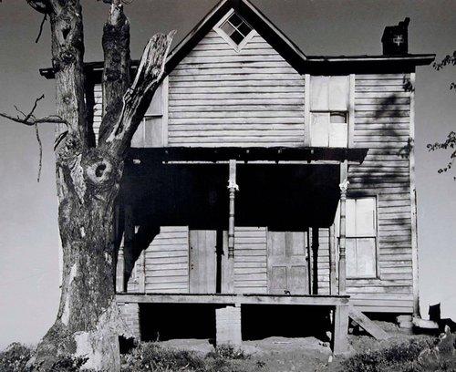 House with Dead Tree, Culpeper, Virginia