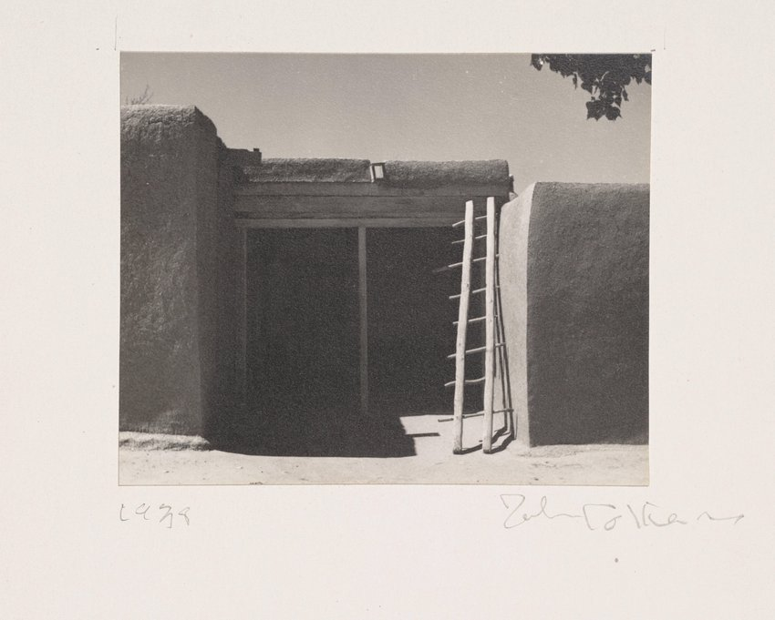 image of 'Untitled [Ladder]'