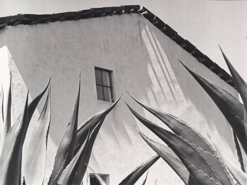 image of 'Ventana a los magueyes'