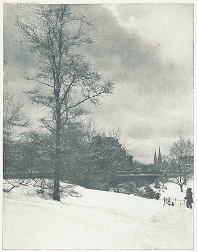 A Winter Sky - Central Park, from the portfolio Picturesque Bits of New York and Other Studies
