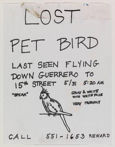 """Found """"Lost Bird"""" Poster"""