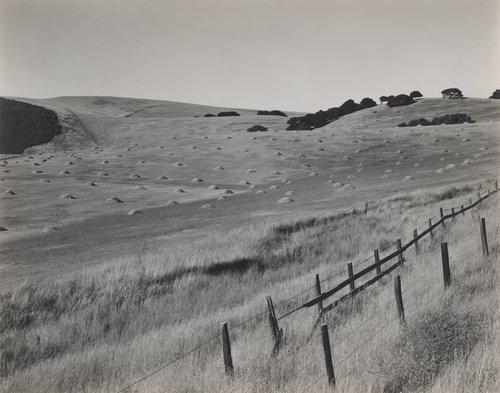 Salinas Hills #1