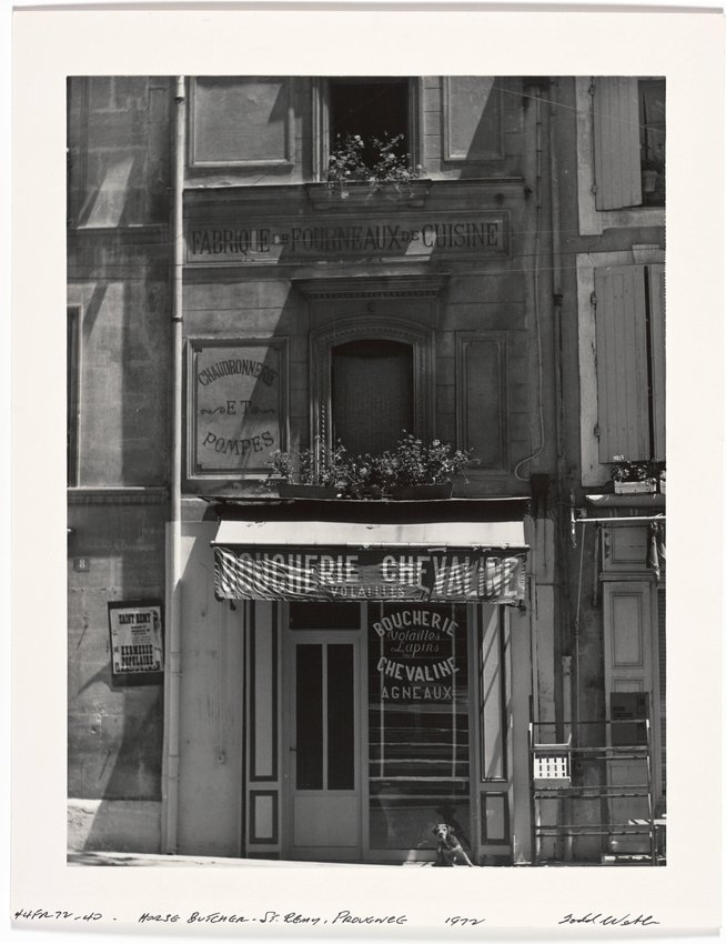 image of 'Horse Butcher, St. Remy, Provence, France'