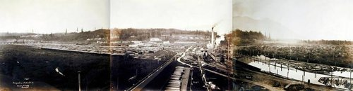 Snoqualmie Falls Lumber Company