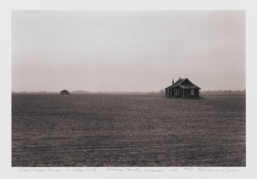 Sharecropper houses in cotton field, Monroe County, Arkansas, from the series Of the Soil