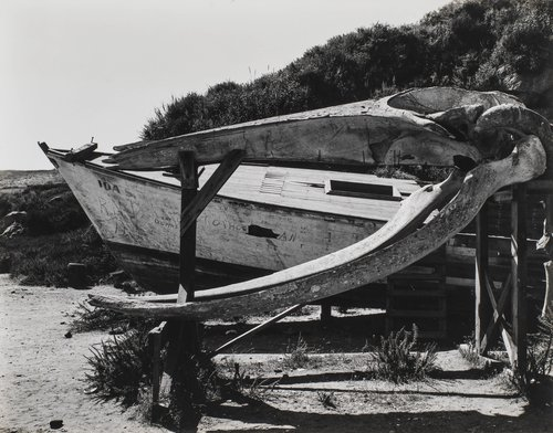 Boat, Point Lobos #3