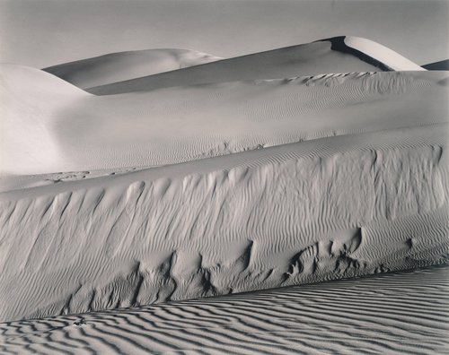 Dunes, Oceano