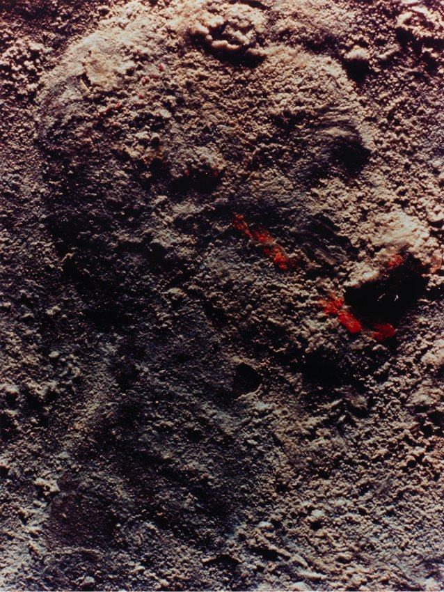 image of 'Copperhead No. 1'