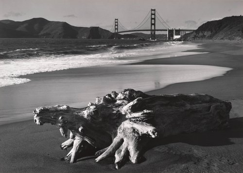 Log and Golden Gate Bridge, San Francisco, from Portfolio Two: Twelve Photographs by Pirkle Jones