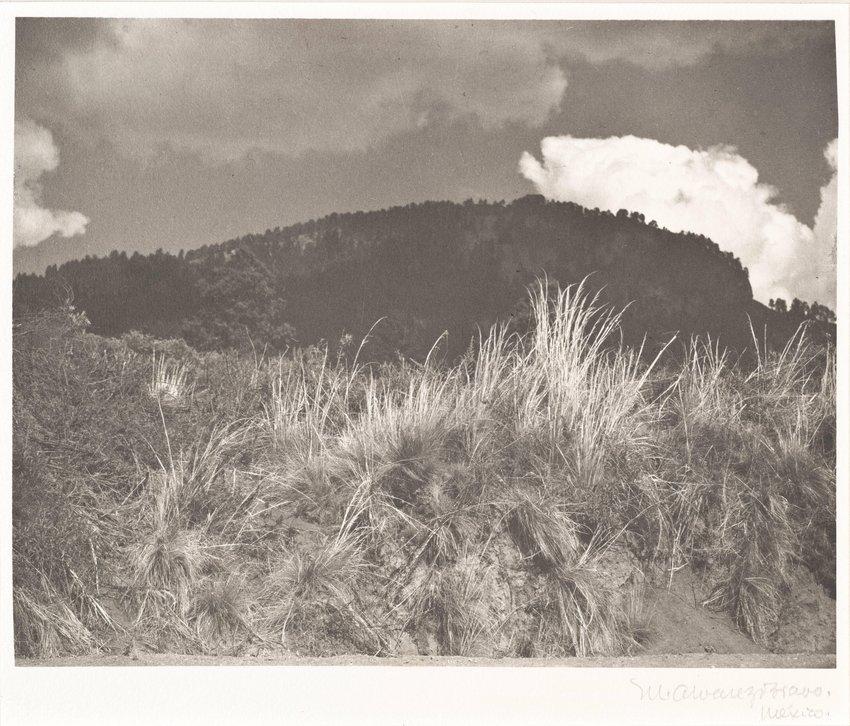 image of 'Montaña negra, nube blanca (Black Mountain, White Cloud)'