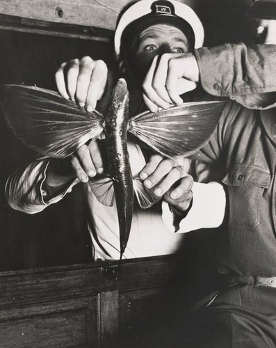 Men Hold Flying Fish