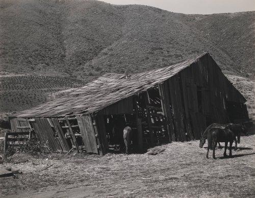 Sousa's Barn #4, Big Sur