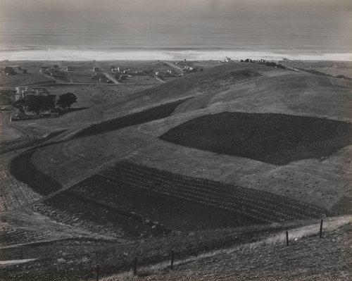 Landscape, Skyline Boulevard, San Francisco, California