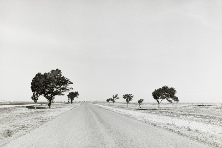 image of Untitled, from the series Continental Divide
