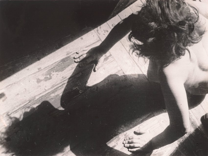 image of 'Untitled [Nude and shadow]'