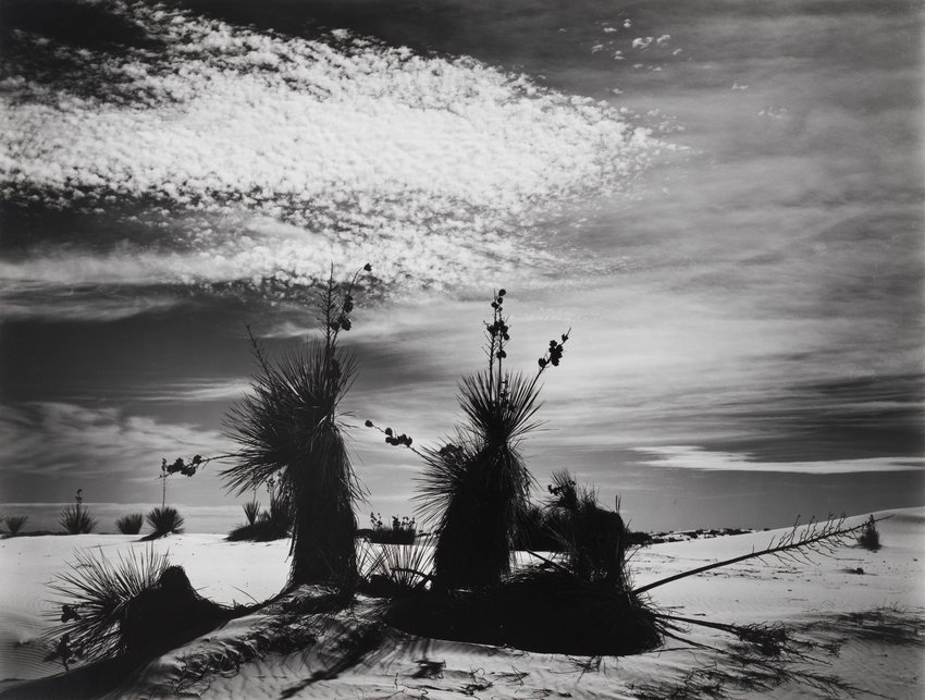 image of Untitled (White Sands, New Mexico)