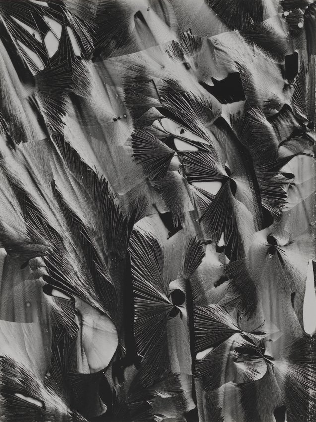 image of Untitled (Plastic Paint)