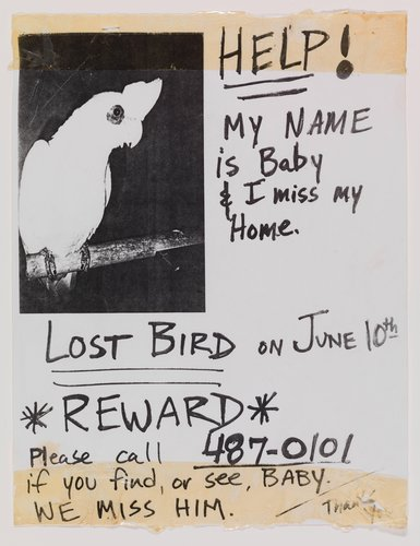 "Found ""Lost Bird"" Poster"