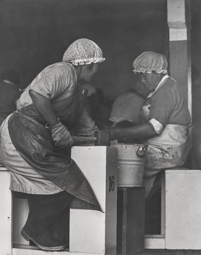 Abalone Workers, Monterey