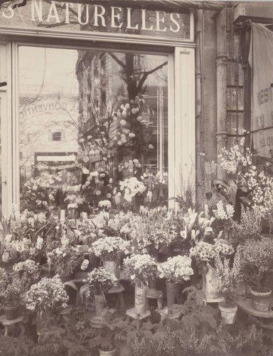 Boutique-Fleurs-rue de Vaugirard