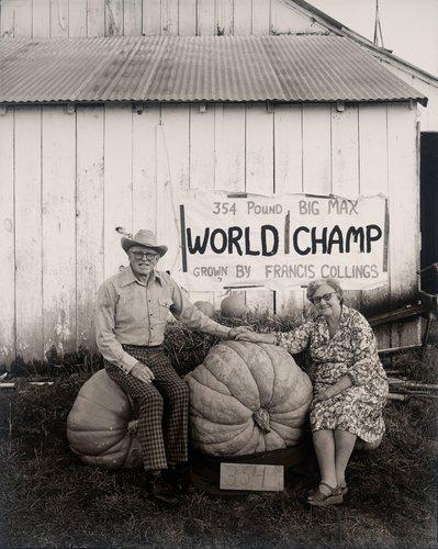 The Pumpkin People-Petaluma, California
