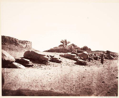 Egyptian Archaeological Site
