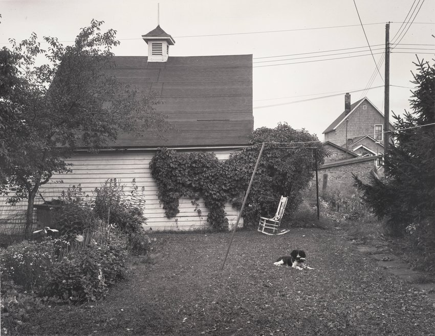 image of 'Mathew Brady in the Back Yard I'