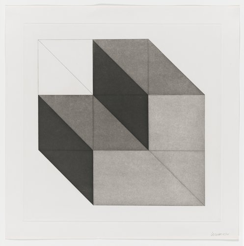 Forms Derived from a Cube, Plate #06