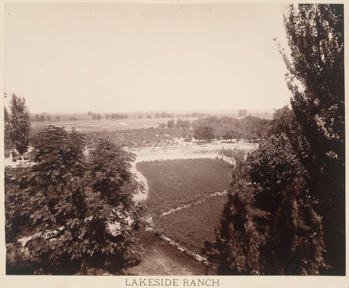 Lakeside Ranch, Old Orchard and Vineyard from the Superintendent's House