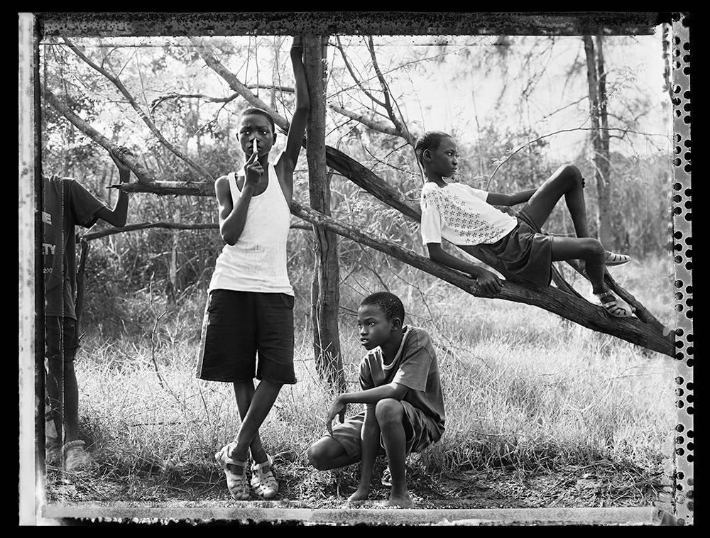 image of 'Poaching, Senegal'
