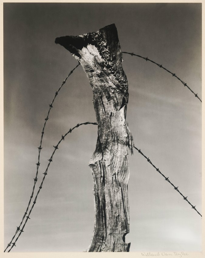 image of 'Fence Post and Barbed Wire'