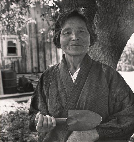 Haru Asawa