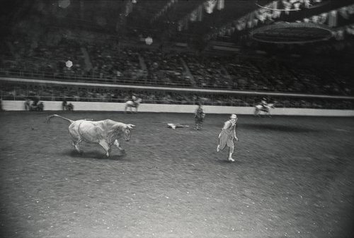 Rodeo, Fort Worth