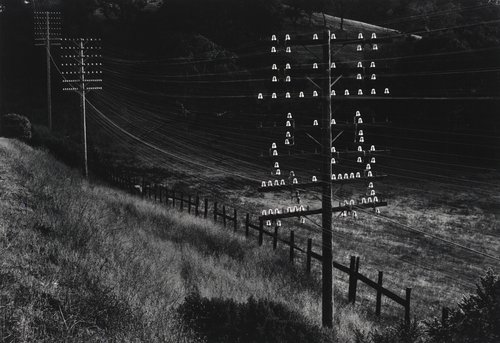 Untitled [Insulators and poles, Marin County, California]